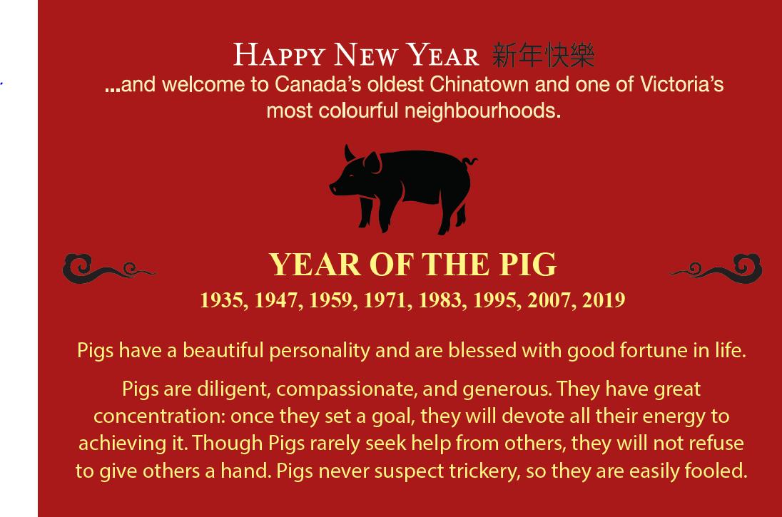 Chinese New Year Celebration | Victoria